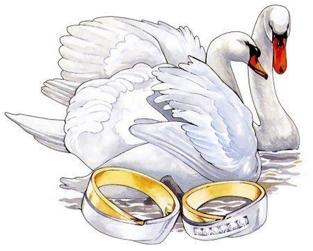 Свадебная кричалка - 12 сентября